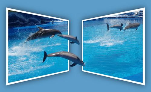 http://www.coolwebmasters.com/uploads/posts/2009-12/1260545137_oob-09.jpg