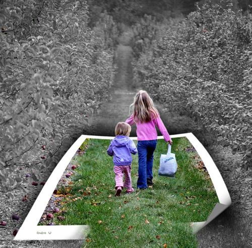 http://www.coolwebmasters.com/uploads/posts/2009-12/1260545148_oob-21.jpg