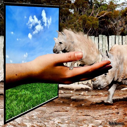 http://www.coolwebmasters.com/uploads/posts/2009-12/1260545247_oob-41.jpg