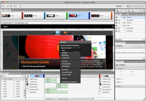 Adobe Creative Suite 5 - Новинка: Flash Catalyst CS5