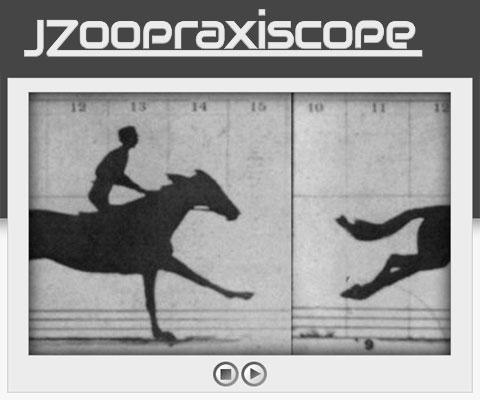 JZoopraxiscope: создание анимаций из статичных изображений